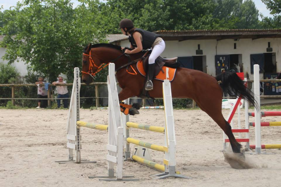 Colo spectacle equestre